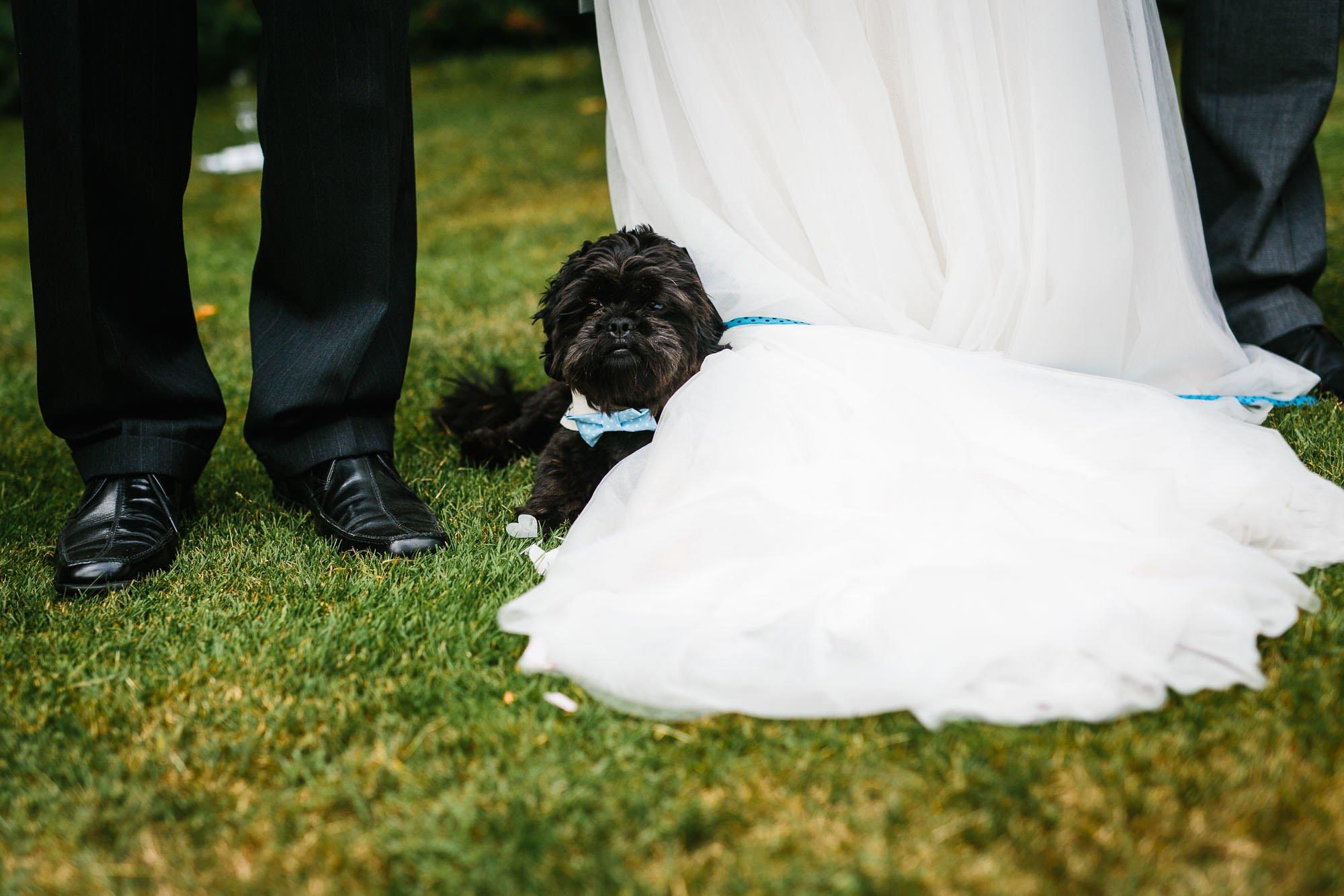 A Surrey Garden Wedding - Natalie and Nick 54